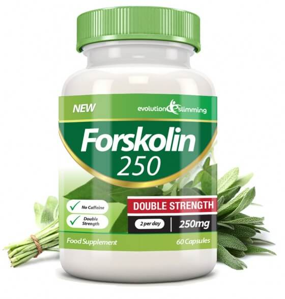Forskolin 250 - Evolution Slimming
